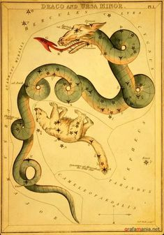 Backgrounds - Old vintage maps star sky   Винтажный фон - Старинная карта звездного неба
