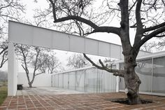 Gallery of Chilean House / Smiljan Radic  - 1