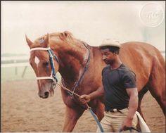 SECRETARIAT - ORIGINAL 1973 SARATOGA PHOTO WITH EDDIE SWEAT!
