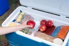 Road Trip Survival Skills: Healthy Car Snacks | ModernMom.com | Tips Via The Nutrition Twins