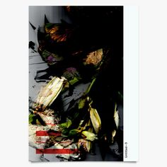 Untitled 3 - Art Print by Michael C Place | Another Fine Mess