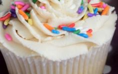 Volumptuous Vegan Cupcake
