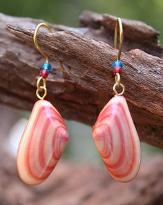 This pair of Coquina shell earrings are made from the bivalve Donax variabilis and collected off of the Gulf Coast in Tampa, Florida. The shells measure 7/8ths of an inch long each plus the brass wire loop at top, making them about an inch long not including the ear wires. The back of each shell is very lightly dusted with pink glitter dust over the otherwise natural intense orange-pink interior and set with a single pale blue glass seed bead to look like a pearl. They are otherwise holl...