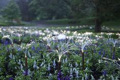 Enjoy A Walk Through The Lavish Garden Lights of Bruce-9