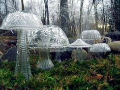 For Mary - lawn mushrooms out of old glassware
