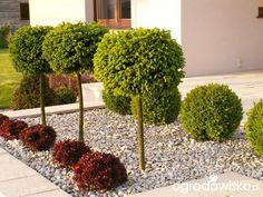 Back Garden Design, Backyard Garden Design, Yard Design, Stone Landscaping, Front Yard Landscaping, Bali Garden, Sloped Garden, Small Gardens, Garden Styles