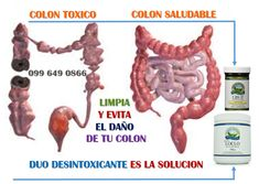 Un programa efectivo para limpiar y restaurar tu colon Natures Sunshine, Crafts, Cleaning Rota, Health Tips, Manualidades, Handmade Crafts, Craft, Arts And Crafts, Artesanato