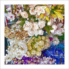 https://flic.kr/p/SEEQzb | flowers