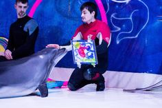 If a dolphin can paint, so are you. Are you ready to take a paint your dolphin challenge? Family ticket for the winner to our Dolphin Show! Comment your entry below. Visit www. Dubai Dolphinarium, Most Beautiful Animals, Dolphins, Ticket, The Good Place, Exotic, Challenge, Ocean, Bird