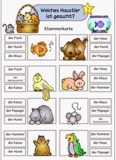 Ideenreise: Materialpaket Haustiere für DAZ