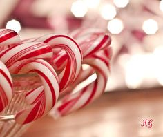 | The Real Beauty Of The Candy Cane....
