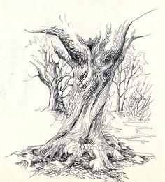 tree trunk | Journal with Gene Keys