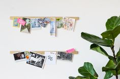 Make a Renter-Friendly Magnetic Photo Display in 3 Easy Steps — Apartment Therapy Tutorials