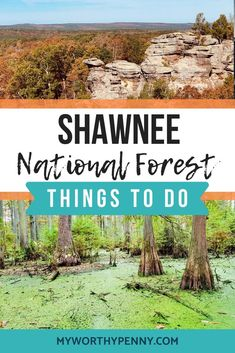 Things To Do In Shawnee National Forest-Shawnee National Forest-Weekend Getaway Illinois offers a lot of great things and Shawnee Nationl Forest is one of them. Here are the things to do in Shawnee National Forest. Mount Hood National Forest, Daniel Boone National Forest, Shawnee National Forest, Olympic National Forest, Los Padres National Forest, White Mountain National Forest, Grand Teton National Park, Rocky Mountain National Park, Shawnee Park