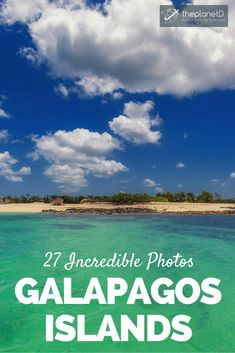 27 photos that will transport you to the Galápagos Islands | The Planet D Adventure Travel Blog | The Galapagos Islands are often referred to as a living museum and once you witness the photos below, you will understand why.