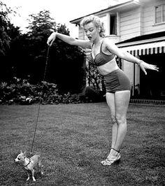 Marilyn Monroe and her Chihuahua ChooChoo.