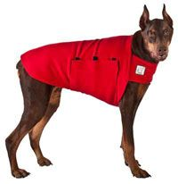 The Doberman Pinscher Tummy Warmer is equivalent to a light dog sweater that has multiple uses. Made of Polar Fleece with a design that contours to your dog's body, this dog apparel provides warmth and ultimate comfort. The Tummy Warmer is held in place with our large Velcro band that is adjustable and protects your dog's underbelly.