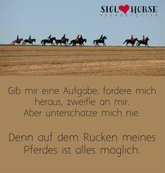 Gib mir eine Aufgabe, fordere mich heraus, zweifle an mir. Aber unterschätze mich nie. Denn auf dem Rücken meines Pferdes ist alles möglich.  #Pferd #reiten