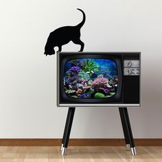Curious Cat Decal now featured on Fab.--loving the tv too.