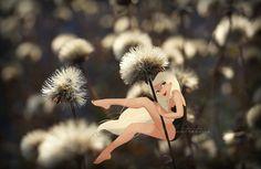 By miia Illustratrice http://miiadbt.canalblog.com/