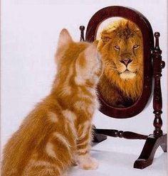 Perception...