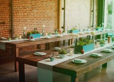Love the succulents and colors at this wedding. It's also school themed. Gorgeous!