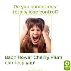 Do you sometimes totally lose control? Bach Flower Cherry plum can help you… Holistic Remedies, Homeopathic Remedies, Home Remedies, Bach Flowers, Switch Words, Special Words, Alternative Medicine, Flower Cards, Herbalism