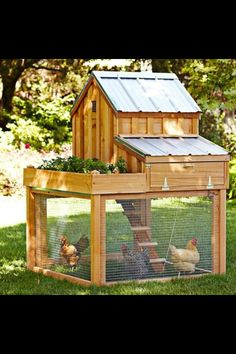 The chicken coop I hope to own soon.  Perfect for my needs.