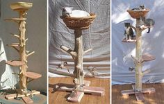 EcoFriendly Natural Cedar Cat Trees, Perches and Scratchers | moderncat :: cat products, cat toys, cat furniture, and more…all with modern style