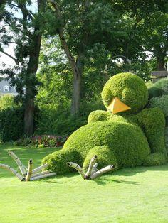 Nantes, France - poussin endormi ponti jardin des plantes