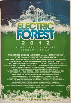 So bummed I missed this last year. But 2012. Hell. Yes. ELECTRIC FOREST!