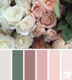 Flora palette - wedding colors?