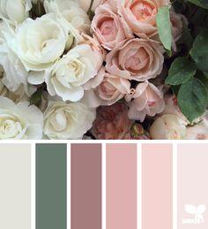 Flora palette - wedding colors?