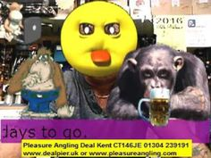 tackle & bait from pleasure angling tackle shop deal kent 29th oct