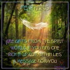 Feathers are gifts from the spirit world, if you find one pick it up for within lies a message for you. ~Dreamweaver, Mystic Magic, FB