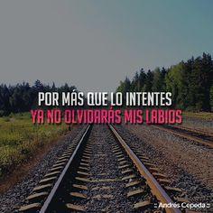 Railroad Tracks, Love Story, Jokes, Wisdom, Thoughts, Humor, Sayings, Life, Funny Things