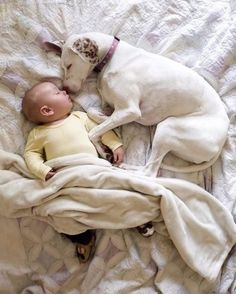 Nora-and-Baby-Archie-A-Love-Story-5783406226606__880