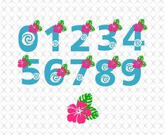 Princess Font, Disney Princess, Moana Font, Moana Theme Birthday, Celtic Alphabet, Celtic Fonts, Font Digital, Silhouette Fonts, Old English Font