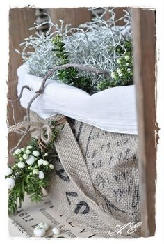 Sack cloth as pots for plants