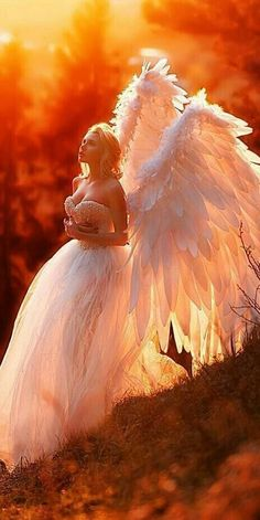 Just a (beautiful) collection of angels/fairies. Pictures (and other things i find) with or about angels/fairies. Fantasy Art Angels, Fantasy Girl, Angel Images, Angel Pictures, Beautiful Fantasy Art, Beautiful Fairies, Angels Among Us, Angels And Demons, Angel Artwork