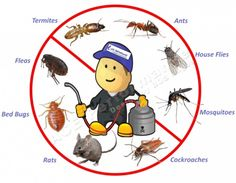 We provides Guaranteed, fast and discreet treatments for termites, cockroaches, bed bugs and more pest control services . Get nearby pest control services for residential and commercial customers in . Mosquito Control, Best Pest Control, Pest Control Services, Cockroach Control, Termite Control, Bed Bugs, Fleas, Ants