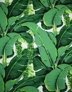 Brazilliance by Dorothy Draper - Our Favorites bright green wallpaper BUY IT HERE