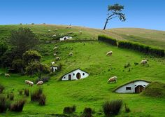 Hobbit Village, New Zealand. I've always wanted to go to the Hobbit Village, but I didn't know it was a real thing! Places Around The World, Oh The Places You'll Go, Places To Travel, Places To Visit, Around The Worlds, Tourist Places, Travel Destinations, Underground Homes, Underground Living