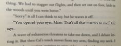 Proof that Cal Calore is a sweet cinnamon roll that should be protected at all times.   Red Queen