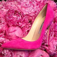 Repost from @brian_atwood via @igrepost_app, Isn't she Pretty in Pink?? FM 13cm…