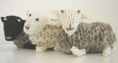 Rare Breed Sheep Group Photo (by Hand Knitted Things)