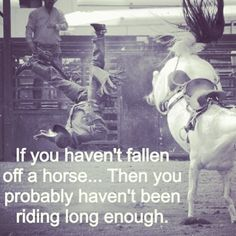 If you haven't fallen off a horse... Then you probably haven't been riding long enough.