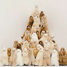 ❤🦙ALPACA OF THE DAY🦙❤--------------🏔A mountain of cuteness has been found in Europe! How many fluffy friends can you distinguish?🏔--------------------🤪Addicted to alpacas? Cute Funny Animals, Cute Baby Animals, Animals And Pets, Cute Dogs, Cute Babies, Alpacas, Alpaca Stuffed Animal, Cute Stuffed Animals, Cute Alpaca