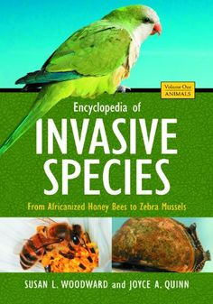 Encyclopedia of Invasive Species: From Africanized Honey ... https://www.amazon.co.uk/dp/0313382204/ref=cm_sw_r_pi_dp_plkhxb83BPHAN