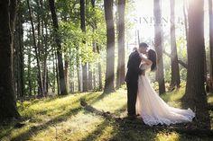 森林包覆感 光影 Pre Wedding Photoshoot, Wedding Poses, Wedding Dresses, Cool Photos, Amazing Photos, Wedding Photography, Bridal, Couples, Inspiration